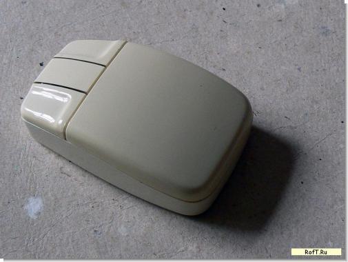 mouse1-1.jpg