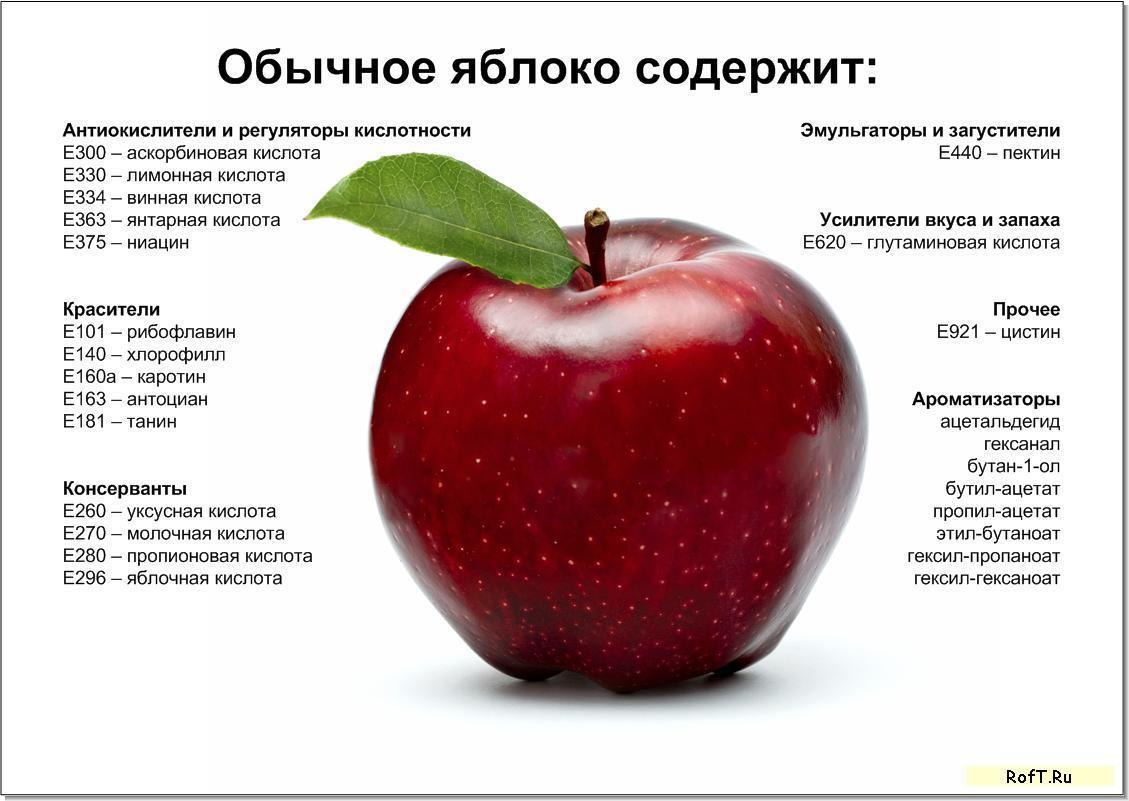 Яблоко от яблоки рассказ 13 фотография