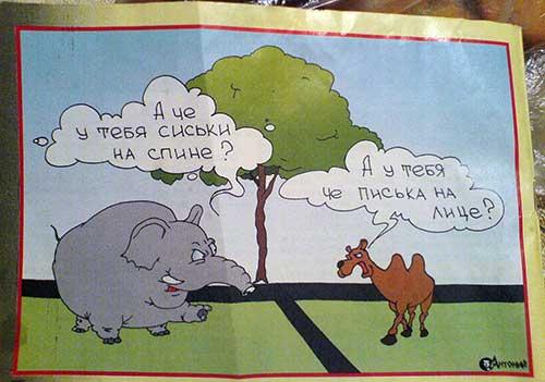Слон и верблюд встретились